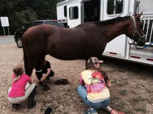 horse-camp-02